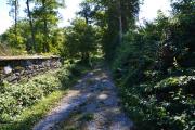 <h5>Farm Lane</h5>