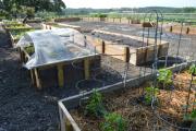 <h5>The kitchen garden</h5><p></p>