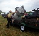 <h5>An Amish auction</h5><p></p>